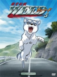 Ginga Densetsu Weed wallpaper probably containing anime titled Ginga anjing