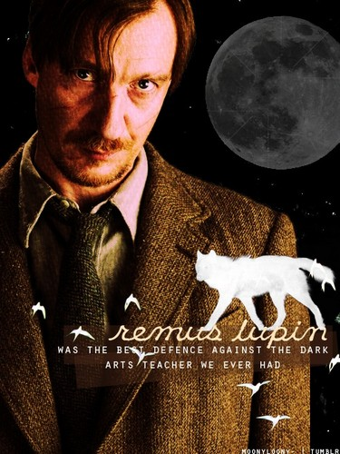 Remus Lupin karatasi la kupamba ukuta possibly with an opossum, a sign, and a business suit called Lupin