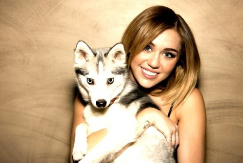 Miley's new Twitter Picture!