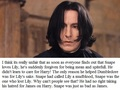 My opinion on Severus Snape
