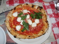 Napoli pizza - pizza photo