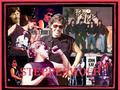 STEPPENWOLF - john-kay-and-steppenwolf wallpaper