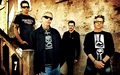 The Offspring - the-offspring wallpaper