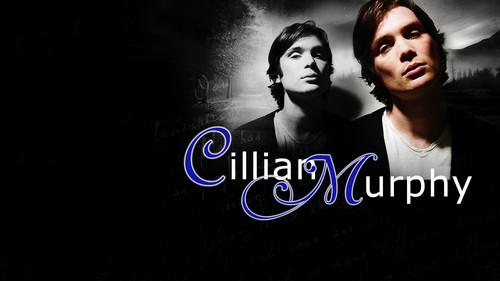cillian_murphy_wallpaper