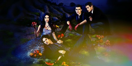 The Vampire Diaries TV toon achtergrond probably containing an bergbeklimmer titled tvd season 3
