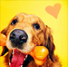 Cute Dog Icons - dogs icon