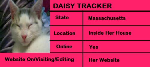 雏菊, 黛西 Tracker