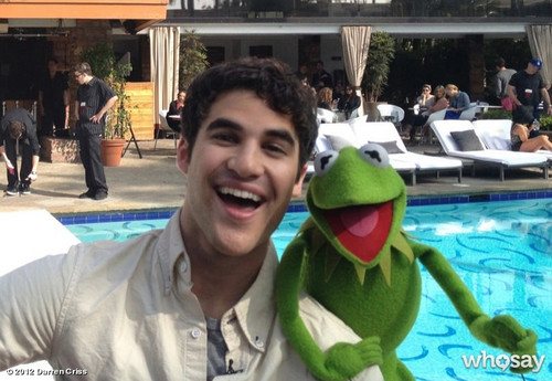 Darren Criss and Kermit - darren-criss Photo