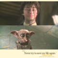 Dobby - dobby-the-house-elf photo