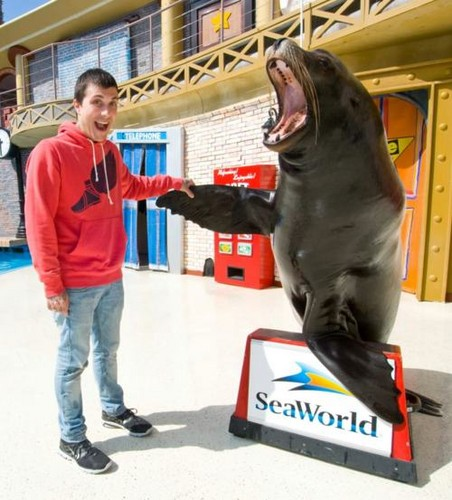 Frank Iero @ Sea World!