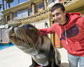 Frank Iero @ Sea World! - frank-iero photo