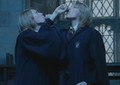 Fred and George aging potion