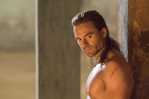 Dustin Clare wallpaper with skin titled Gannicus