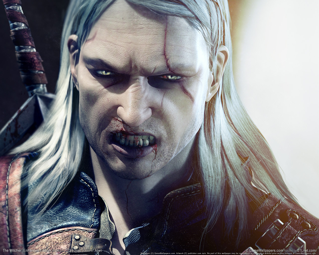 http://images5.fanpop.com/image/photos/29300000/Geralt-the-witcher-29331479-1280-1024.jpg