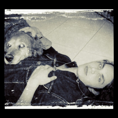 glee Samuel Larsen and Golden Retriever