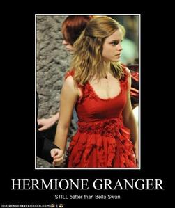 Harry Potter vs Twilight fond d'écran containing a dîner dress entitled Hermione Granger