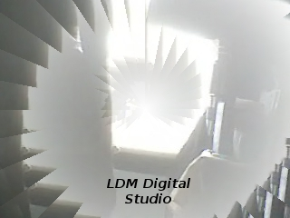 LDM Inc the webcam
