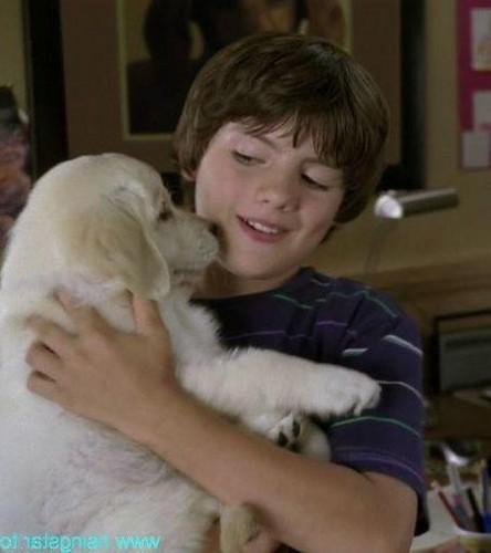 Matt loves 子犬