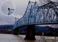 Mothman Stuff - cryptozoology photo