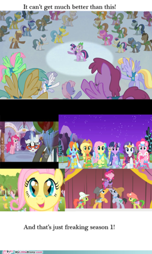 My Little Brony Stuff - my-little-pony-friendship-is-magic Fan Art