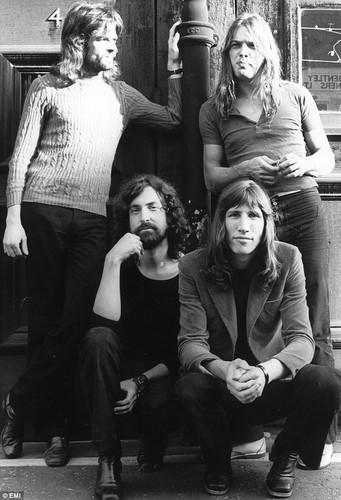 담홍색, 핑크 Floyd 1970s