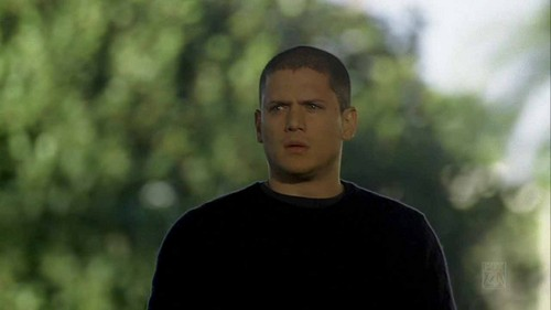Prison Break - 4x19 - Son of a Bitch  - wentworth-miller Screencap