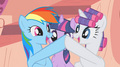 Rainbow Dash and Rarity
