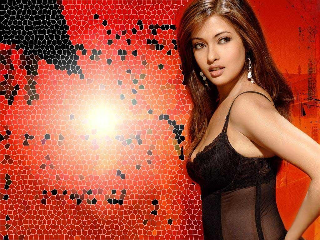 Love Wallpaper Hd Santabanta : Riya Sen images Riya HD wallpaper and background photos (29320861)