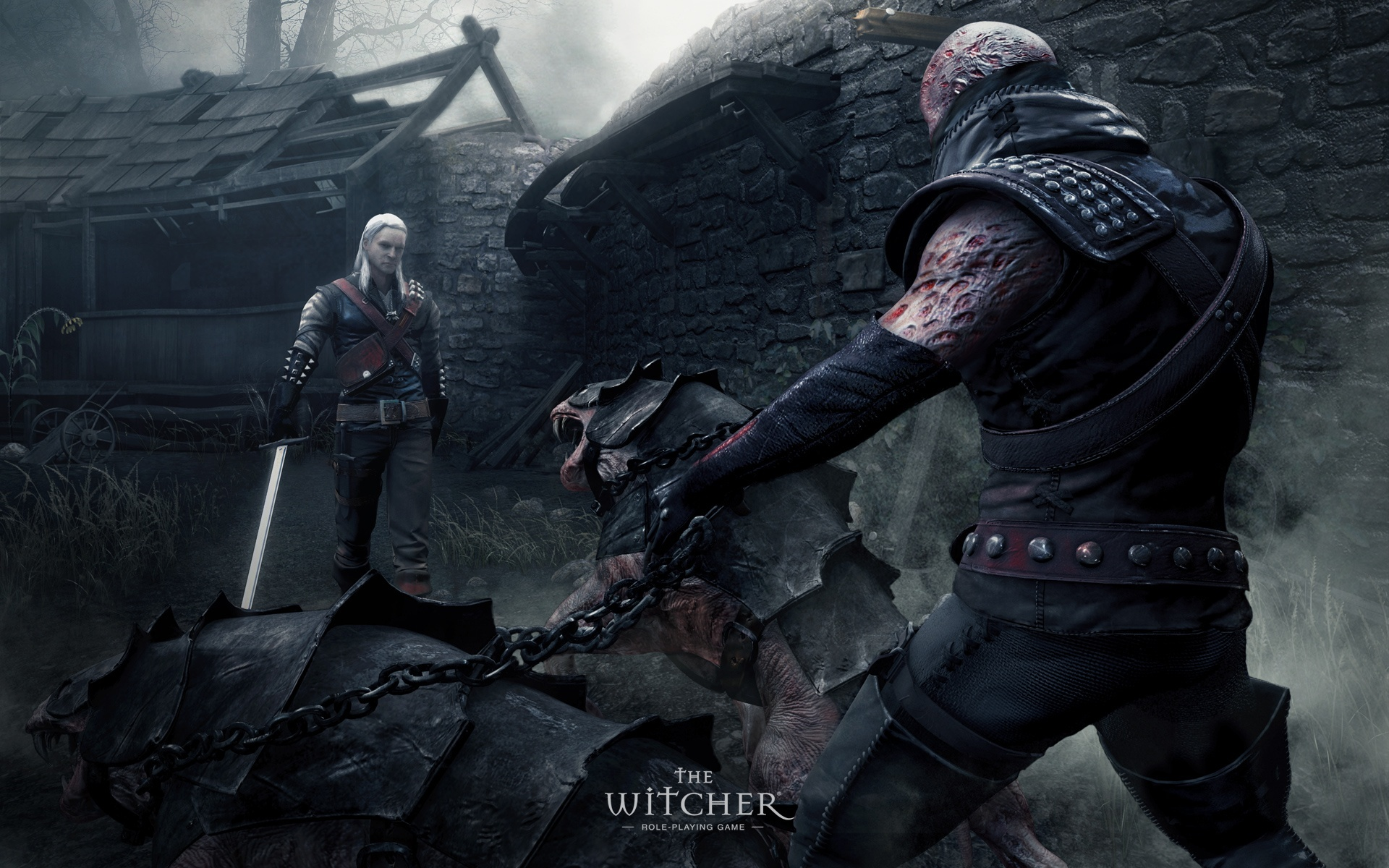 the witcher the witcher wallpaper 29331452 fanpop