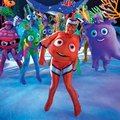 nemo - finding-nemo photo