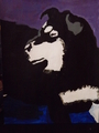 siberian husky painting - siberian-huskies photo