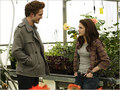 twilight edward and bella - twilight-series photo