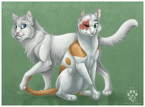 Cloudtail & Brightheart(Snowstorm & Lavatail's parents)