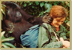 Dian Fossey January 16, 1932– December 27, 1985