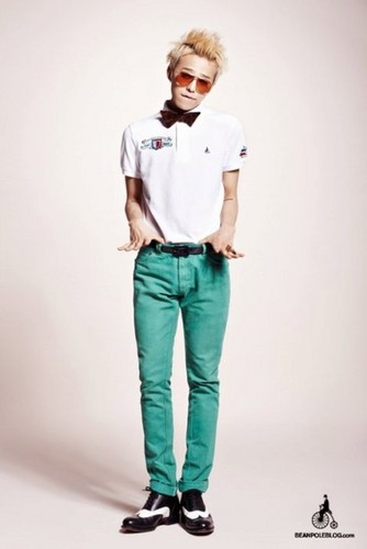 G-Dragon For haricot, fève Pole