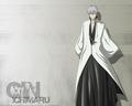 Gin - ichimaru-gin wallpaper