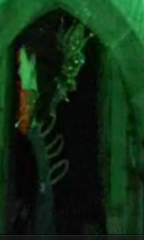 Helen Mccrory in The Bampira of Venice