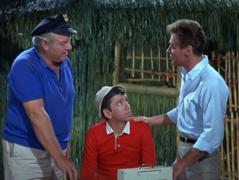 Image result for THE SKIPPER AND GILLIGAn on gilligan's island