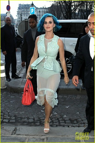 Katy Perry: Sheer Fashion Week Outfit!