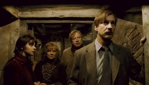 Lupin, Tonks, Arthur and Molly HP 6