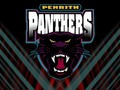 Penreth Panthers