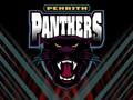 Penreth Panthers