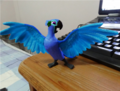 Proof of rio 2