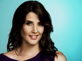Robin Scherbatsky - robin-scherbatsky wallpaper
