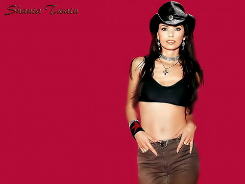 Shania Twain fond d'écran possibly containing attractiveness entitled Shania Twain