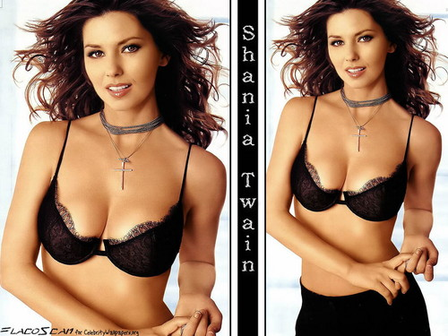 Shania Twain achtergrond with a brassiere, an uplift, and attractiveness entitled Shania Twain