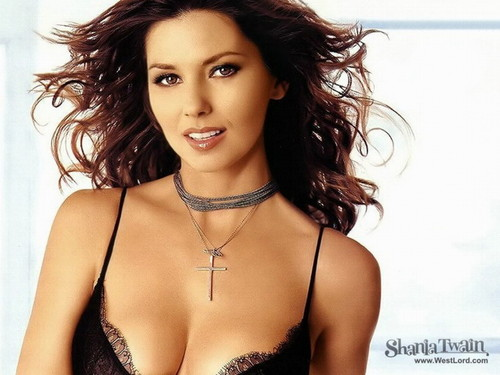 Shania Twain karatasi la kupamba ukuta probably containing attractiveness, a portrait, and skin called Shania Twain