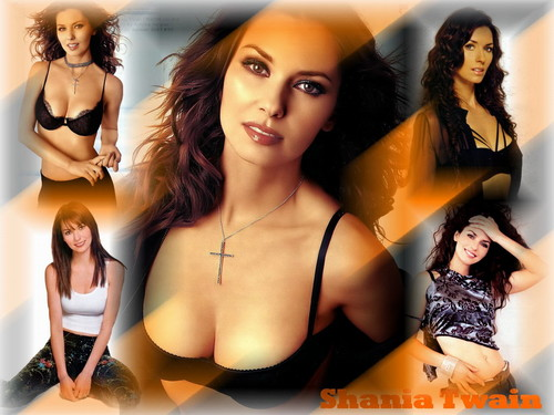 Shania Twain wallpaper containing attractiveness, a bikini, and a lingerie called Shania Twain