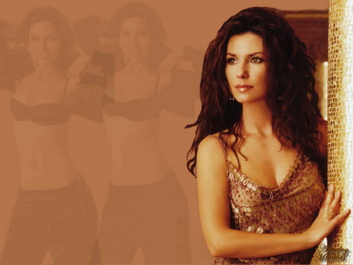 shania twain fondo de pantalla possibly with attractiveness entitled Shania