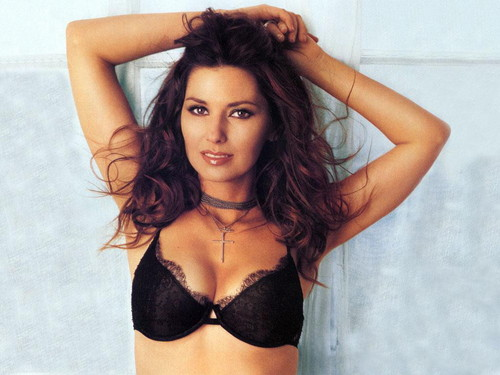 Shania Twain karatasi la kupamba ukuta possibly with a brassiere, a bikini, and attractiveness entitled Shania